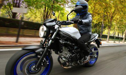 Suzuki SV 650: Pura moto naked