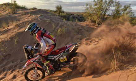 Rally Dakar: Undécima etapa