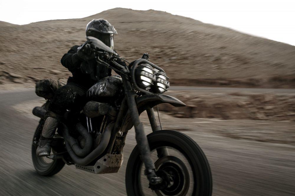 Harley Davidson 1200 Roadster Desert Wolves