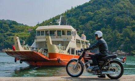 Kawasaki W800 2022, eterna